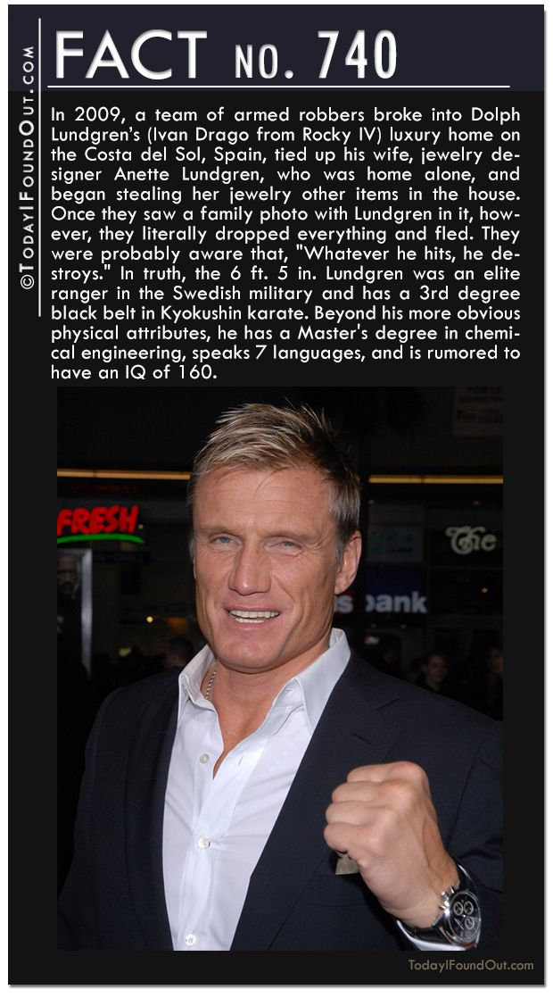In 2009, a team of armed robbers broke into Dolph Lundgren's home, tied up his wife, who was home alone, and began stealing her jewelry other items in the house. Once they saw a family photo with Lundgren in it, they literally dropped everything and fled. The 6 ft. 5 in. Lundgren was an elite ranger in the Swedish military and has a 3rd degree black belt. He also has a Master's degree in chemical engineering, speaks 7 languages, and is rumored to have an IQ of 160.