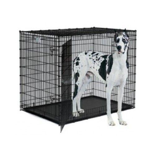 Xxl-dog-crate