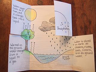 """create this foldable that labels, explains, and shows the water cycle. It is just a regular sheet of cardstock or copy paper folded at 2 3/4"""" from both ends. This brings the flaps together at the center of the page. The flaps are cut at 4 1/4"""" or right in the middle, all the way to the fold line. Each step of the water cycle gets a flap of its own, and the image drawn inside, along with the description, go with that particular step."""
