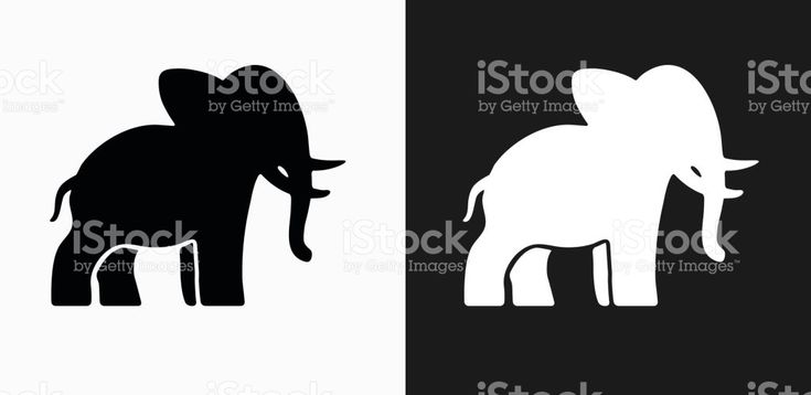 Elephant Icon on Black and White Vector Backgrounds royalty-free stock vector art