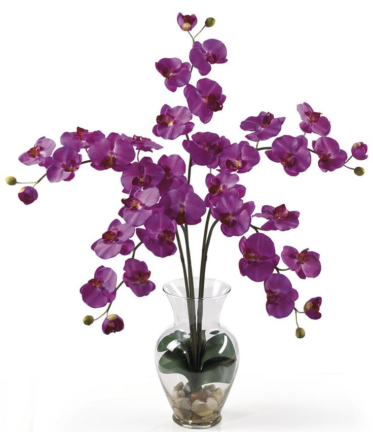 26 Best Images About Bedroom Orchid On Pinterest Pantone