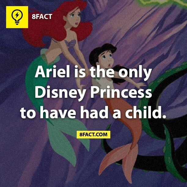 Pretty sure... unless they decide to make a sequel for one of the more recent princesses