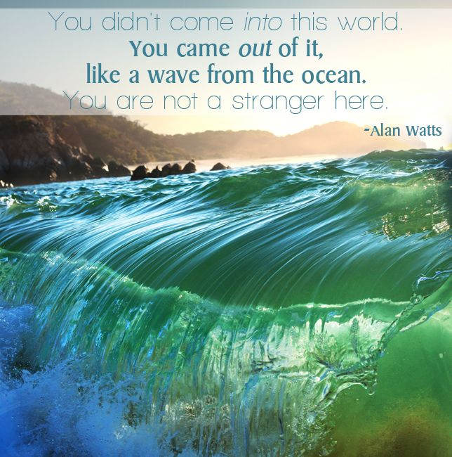 You didn't come into this world. You came out of it, like a wave from the ocean. You are not a stranger here. Alan Watts
