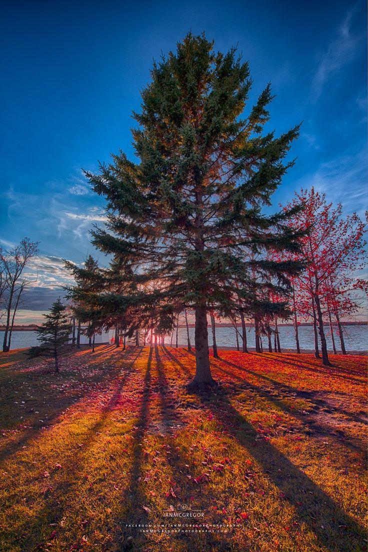 ~~Lakeside Colors   autumn rainbow of colors at York Lake, Saskatchewan, Canada   by Ian McGregor~~