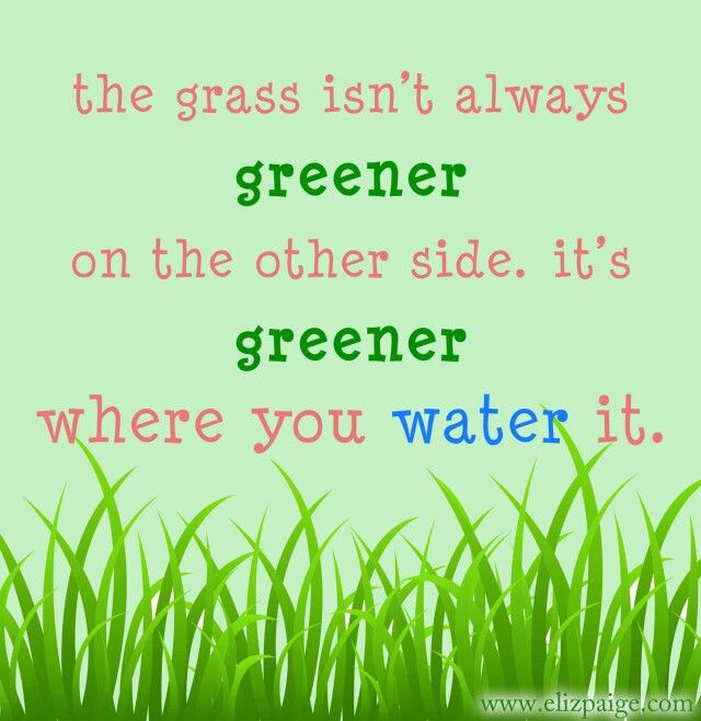 The grass isn't always greener on the other side. It's greener where you water it #TheGrassIsntAlwaysGreener #Quotes #EverythingChangesButYou