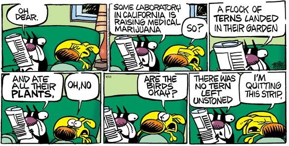 Marijuana Jokes   California's medical marijuana (Jokes Kids Friendly Forum) 9/13/2009 ...
