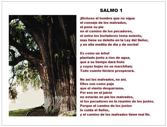 Catolicidad: SALMO 1