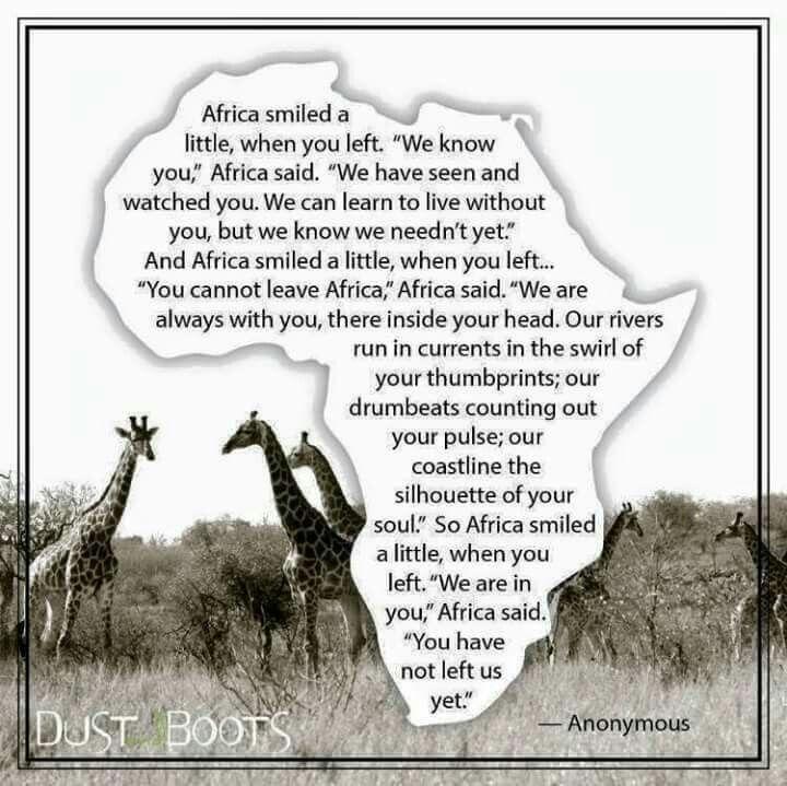AFRICA???  Aber Namibia/Südafrika