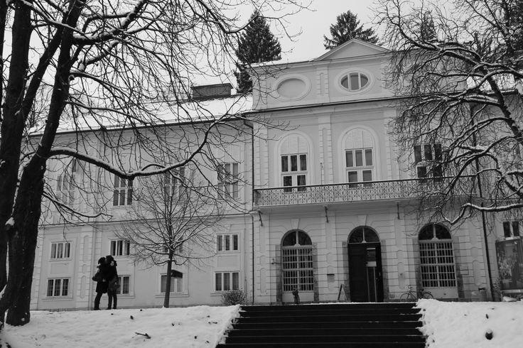 Cekinu ta snežna idila prav paše. / The Cekin mansion looks really good in the winter atmosphere.
