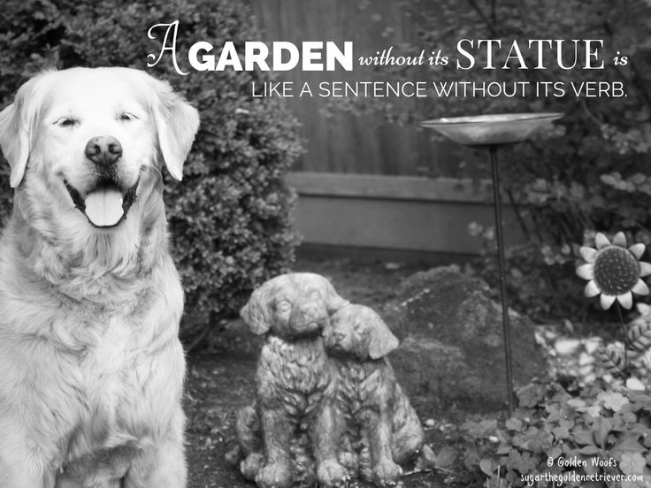 A Garden Without Its Statue Is Like A Sentence Without Its Verb. |  Inspiring Quotes | Pinterest