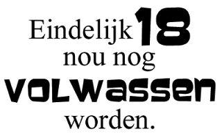 kaartenknutsels van femke: FREEBIE 6 nederlandse verjaardags tekstjes