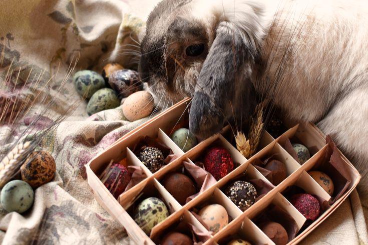 Набор из Пасхальных яичек