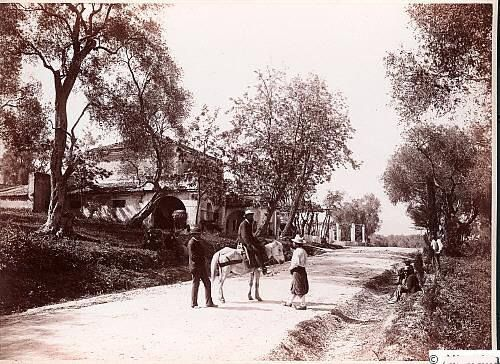 Tavernas on the road to Ipsos 1896 https://www.facebook.com/photo.php?fbid=1638017093135042