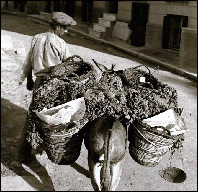 ΑΘΗΝΑ - 1938 - ΥΠΑΙΘΡΙΟΣ ΜΑΝΑΒΗΣ ΠΟΥΛΑΕΙ ΣΤΑΦΥΛΙΑ ΣΕ ΓΕΙΤΟΝΙΑ ΤΗΣ ΑΘΗΝΑΣ - ΦΩΤΟΓΡΑΦΙΑ HERBERT LIST