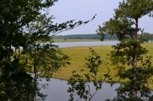Luxury waterfront living in James City County! Nestled amid Virginia horse country and seated at the confluence of Uncle's Neck Creek and the Chickahominy River, the opportunity is here to build your dream home.