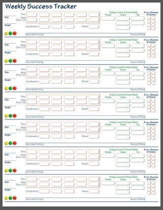 Best 25+ Water intake chart ideas on Pinterest Drinking water - mood chart form