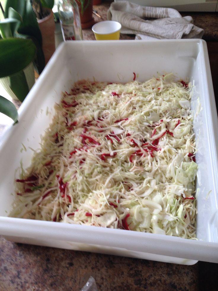 Sałatka na zimę do słoików . 3 główki kapusty poszatkować,6 czerwonych papryk pokroić w paseczki,6 cebul pokroić w cienkie wiorka,wymieszać razem,posypac 3/4 kubka soli i zostawić na noc. Rano odcisnąć sok z kapusty.Zagotowac zalewę .Do gotującej zalewy włożyć kapustę gotowac 15 minut.Goraca sałatkę wkładać do słoików,zakręcić i odwrocić do góry dnem.Smacznego. Zalewa: 3 kubki octu,2 kubki oleju,2 3/4 kubka cukru,11/2 łyżeczki tumeric.(kurkuma).