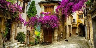 Image result for south of france