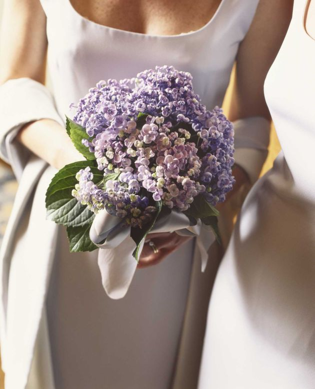 Hydrangeas Summer Wedding Flower