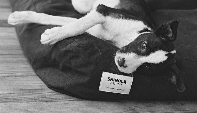 Shinola Hundebett