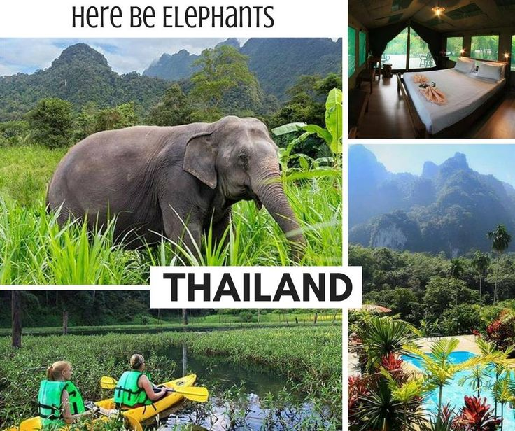 Treat yourself to something a little different for your 2017 holiday. Combining a relaxing beach break on the pristine white sands of Krabi with two nights of jungle trekking at the awe-inspiring Elephant Hills, together with a blissful stay at Phuket's best luxury five-star resort, this terrific Thai getaway promises to deliver a truly magnificent holiday experience.