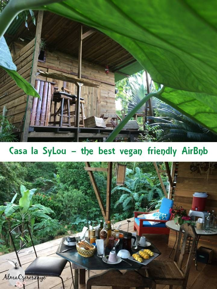 Vegan friendly AirBnb in Samana, Dominican Republic. All is bio, handmade and made with love. #dominicanrepublic #vegan #samana #lesterranas #bio #homemade