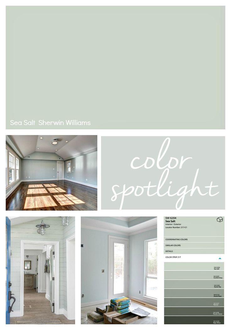 Sherwin-Williams-Sea-Salt.-Color-Spotlight..jpg 800 ×1.143 pixels