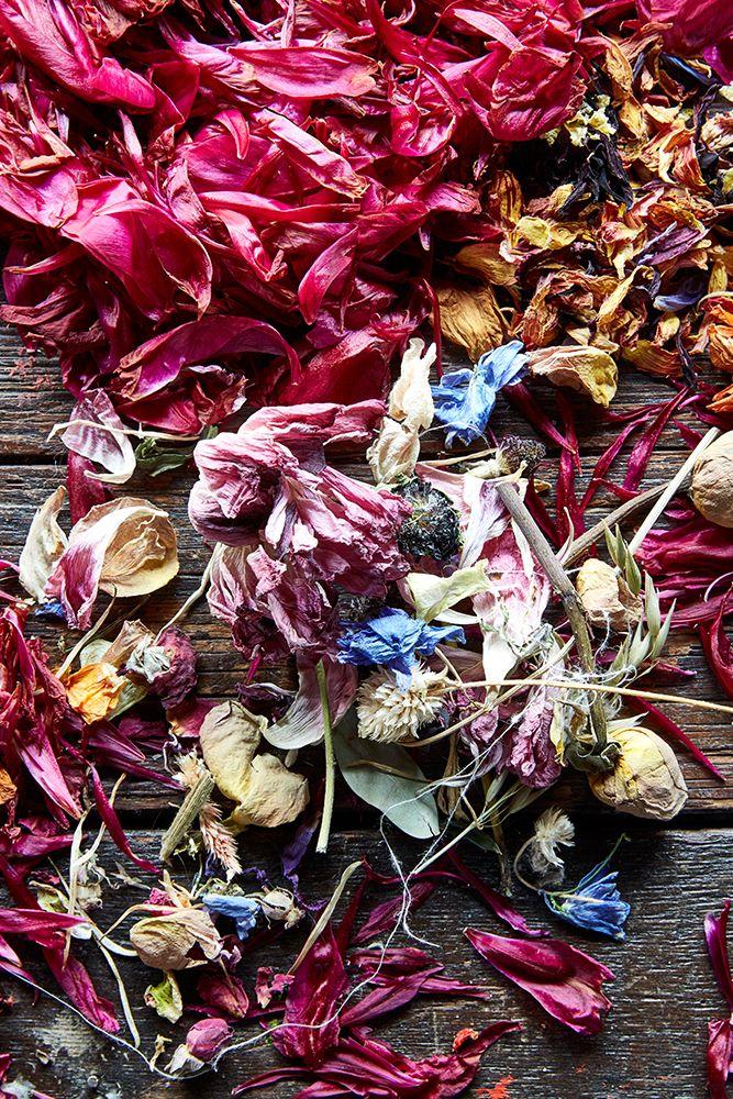 Andrea_gentl_flowers_natural_dye_eyeswoon14