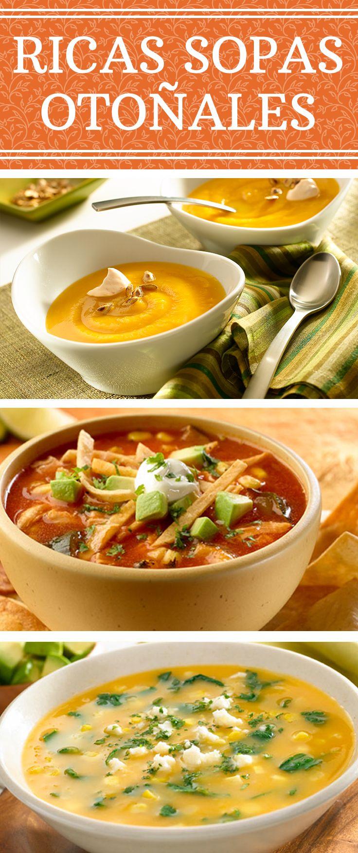 ¡Nada como unas ricas sopas otoñales con nuestros sabores latinos! Pruébalas y decide cuál es tu favorita: Crema de calabaza a chipotle | Sopa de tortilla con pollo y verduras asadas | Locro.
