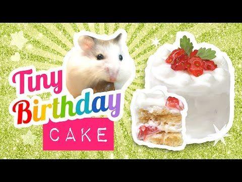 DIY Edible Miniature Cake for Hamsters or Humans! Make A Mini Birthday Cake ♥ - YouTube