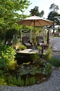 There is a really tranquil, calm feel to this pond image. Repinned by www.watersidenursery.co.uk #pondplants uk