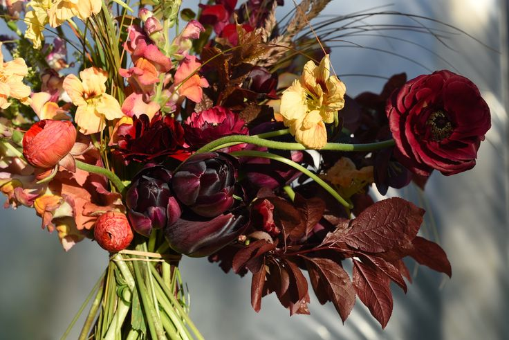 Autumn colours in spring, september, tulips, ranunculus, snapdragon, nasturtium, plum foliage, grasses, burgundy, salmon, bridal bouquet, wedding