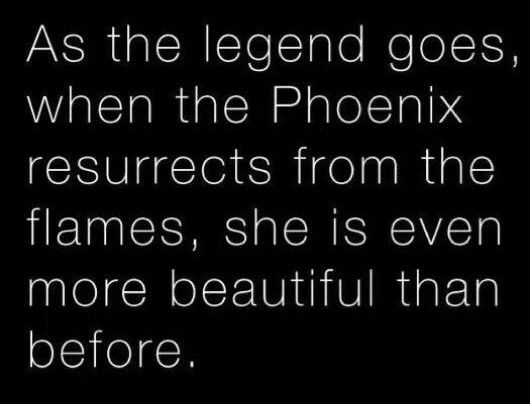 Phoenix Legend Quotes