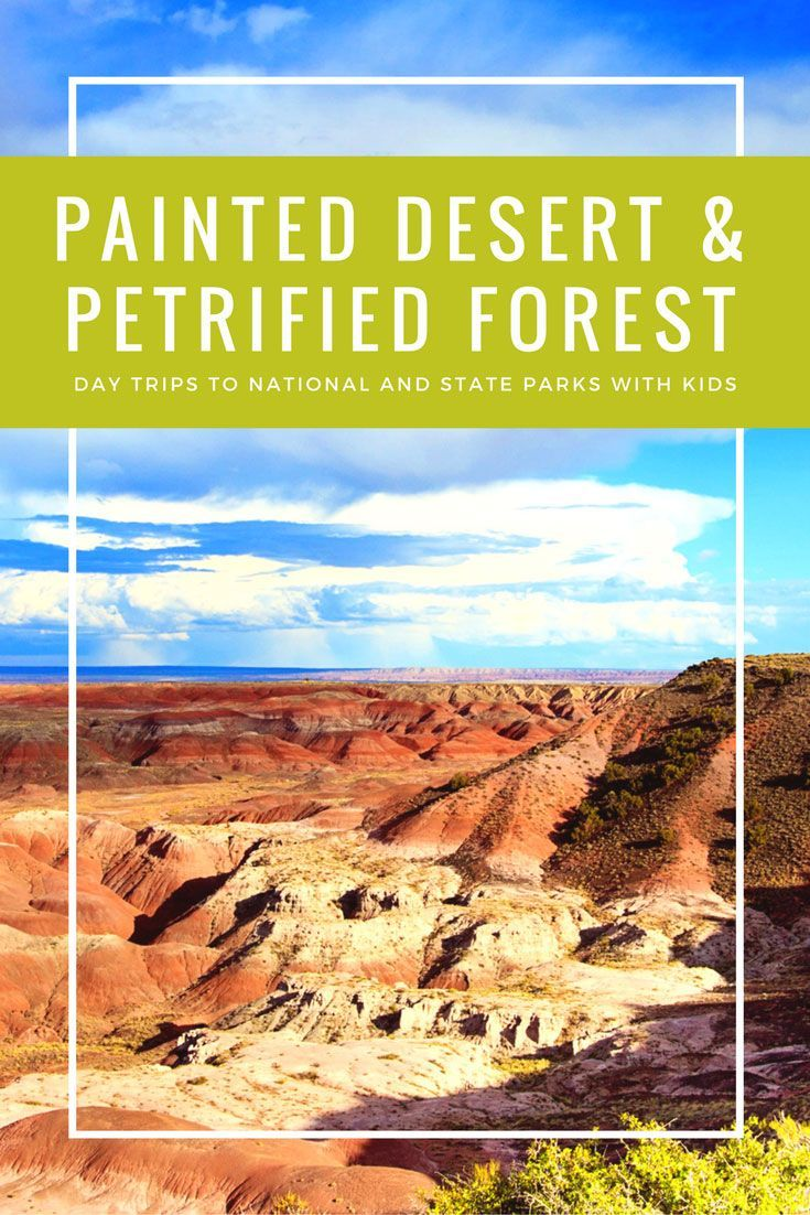 Sunset drive through the Painted Desert and Petrified Forest with kids in Arizona