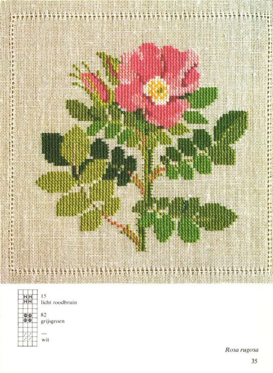 Gallery.ru / Фото #20 - Cross Stitch Pattern in Color - Mosca