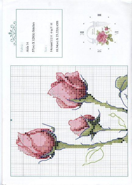 róże1