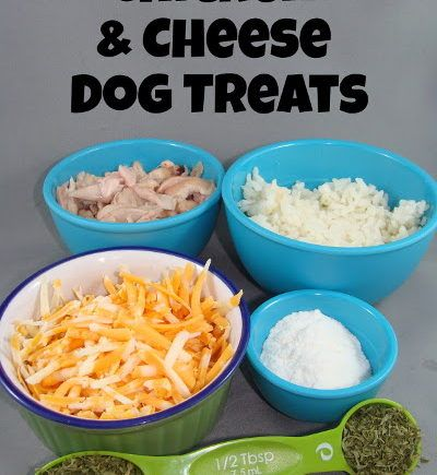 The 25 best chicken rice dog food recipe ideas on pinterest chicken rice cheese dog treat forumfinder Choice Image