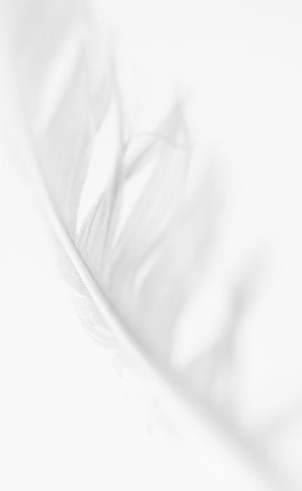 .#minimal  #white #pale