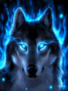 31 best wolf couples images on Pinterest