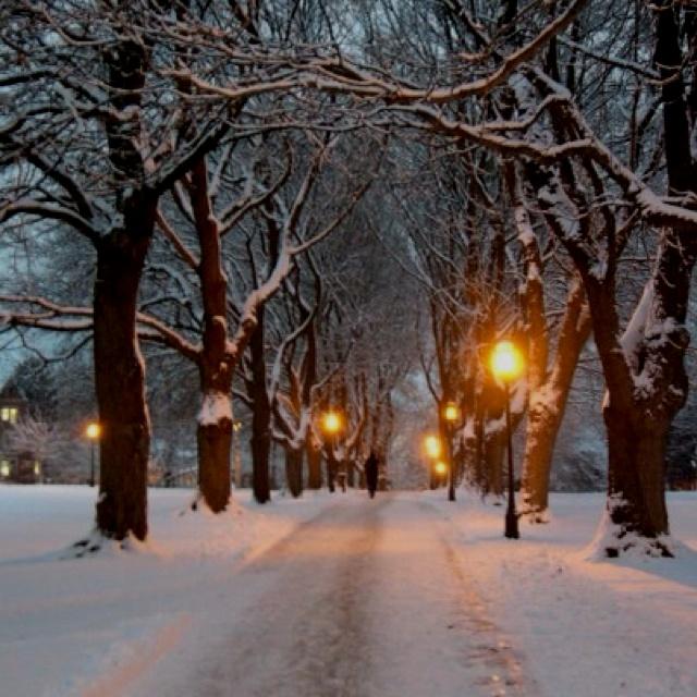 Hello walk, University of Idaho! so beautiful! @Allison Touchstone