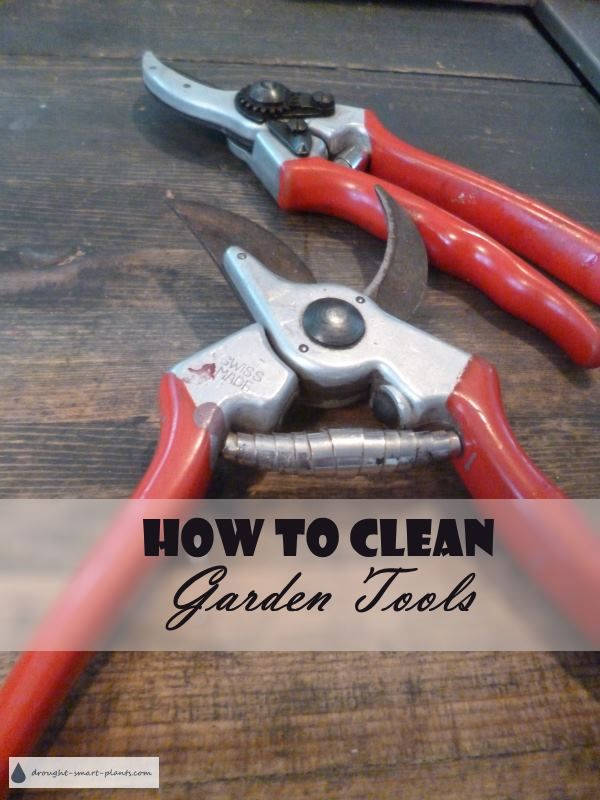 How To Clean Garden Tools   Sharpening And Cleaning Tips