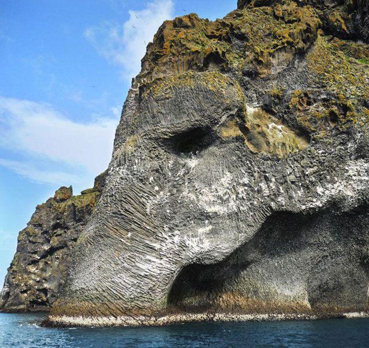 Elephant-Islande-5