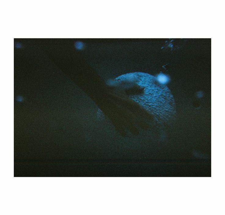 ALANA WILSON | AQUATHERAPIE