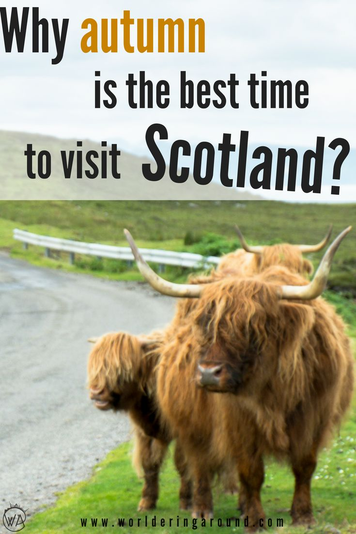 The best time to visit Scotland. Why autumn is the best time to visit Scotland. 10 reasons to visit Scotland in autumn, autumn in Scotland, walks in Scotland in autumn, autumn in United Kingdom, autumn Scotland packing, autumn Scotland fall, visit Scotland nature, when to visit Scotland | Worldering around #Scotland #visitScotland #autumninScotland #autumn #pictures #travelphotography