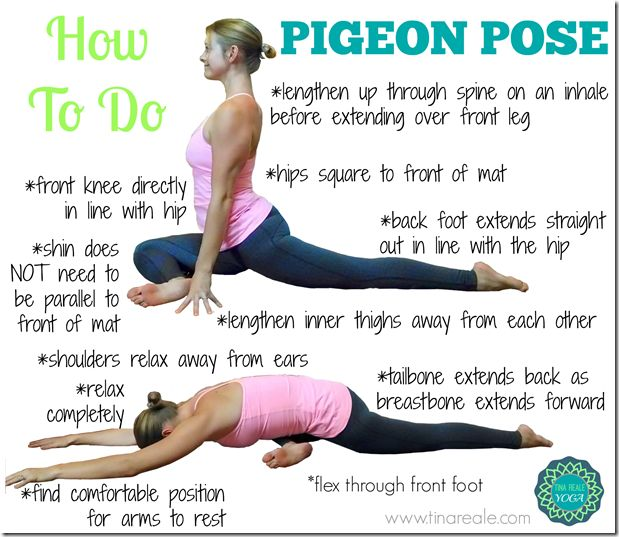 Excersises for pigeon breast