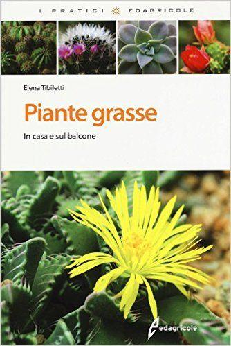 PIANTE GRASSE IN CASA E SUL BALCONE