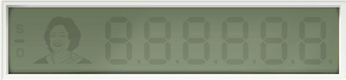 "Shakuntala Devi's (woman known has ""the human computer"") 84th Birthday"