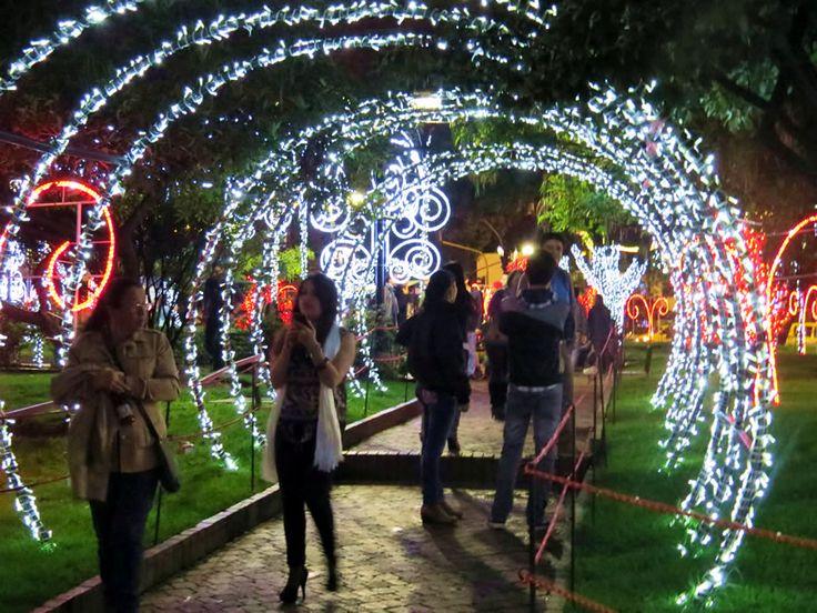 24. Túnel de Luces en el Parque del Hotel Morrison 84