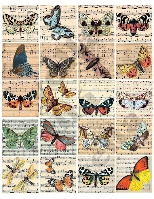 butterfly sheet music clip art 2 inch squares digital download collage sheet