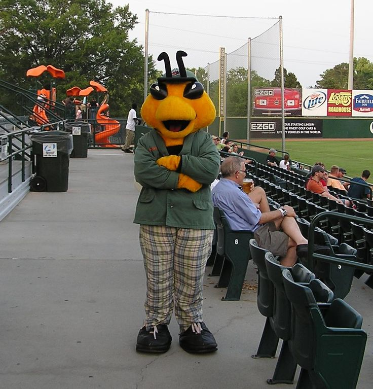 17 Best images about MiLB Mascots: Class A on Pinterest | Legends ...
